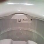 Pour ceux qui ont des héméroïdes, avec lavage automatique (détail)