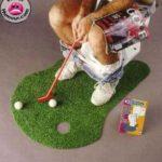 Pour les golfeurs